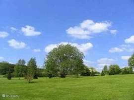 Heerlijk speelveld voor de kinderen met veel groen en ruimte om te voetballen en te ravotten