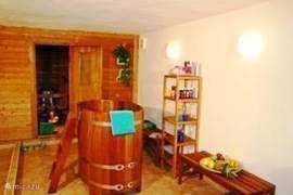 luxe grote sauna met bubbelbad en dompelton