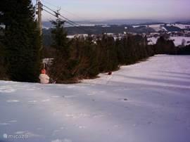 Lekker sleeën en skieën in de winter