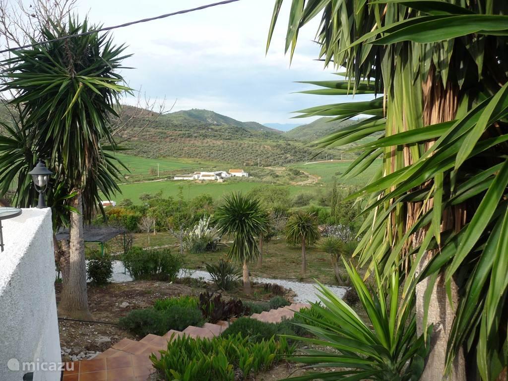 tuin in februari: zicht vanop terras BBQ