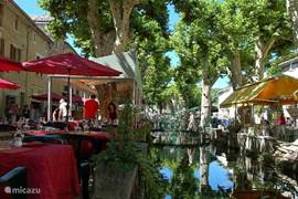 Cozy cafes and stroll in the beautiful do 'Goudargues'; also called' Venice of the Gard called. From here you can also rent canoes to the river Cèze to sail. All this only 10km from our house.