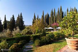 Vanaf uw terras loopt u deze tuin in