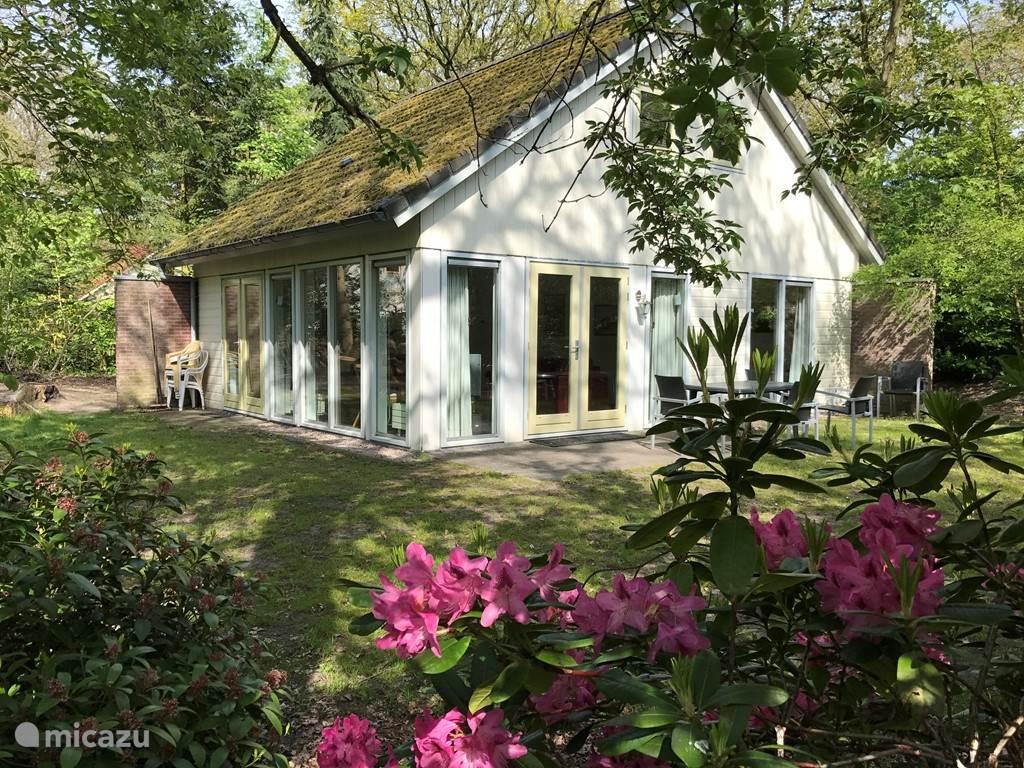 Zeer luxe riante recreatiewoning in Gaasterland , de woning bevind zich in het bos, en ligt 5 min. vanaf het IJsselmeer. In de omgeving kunt u heerlijk wandelen, fietsen, paardrijden, watersport beoefenen , golfen.