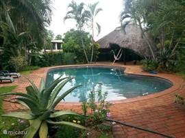zwembad met rieten tuinhuis op achtergrond.