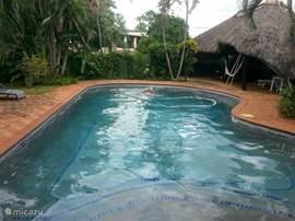zwembad met rieten tuinhuis en hangmat