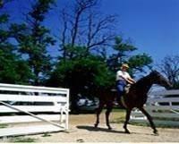 horseback riding, riding outside the park