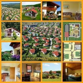 COMFORT villa is generous in space and therefore accommodate up to 8 persons (If multiple children up to 9-10 people)