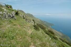 Een adembenemend uitzicht over de Golfo di Policatro op 15 minuten wandelen van Casa valle delle Querce