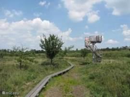 Bungalowpark 't Kooiveld Simmelink is gelegen aan een natuurpark Korenburgerveen. prachtige wandelroute's vanuit het park.