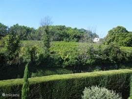 Uitzicht op wijnveld vanuit de 2e slaapkamer