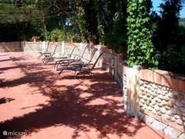 Op uw gemak in alle privacy een boek lezen op het eigen terras aan de overzijde van de rozentuin. Overdekt met een schaduwrijke pergola vol rozenblaadjes.