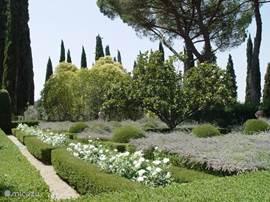 Een der tuinen op het landgoed: de klassieke Italiaanse tuin met, buxushagen, lavendel en witte rozen.  Hier zijn diverse terracotta sculpturen maar ook een bronzen  The Horse van Karel Appel welke hij daar zelf geplaatst heeft.