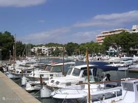 De gezellige haven van Porto Petro