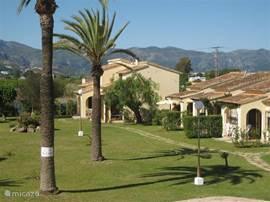 Casa Mimosa rechts achteraan naast de mimosaboom. Op de achtergrond de bergen.