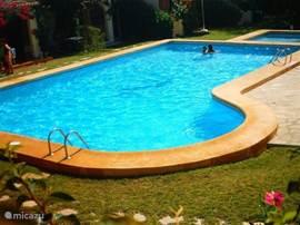 Ruim zwembad met apart kinderbadje.