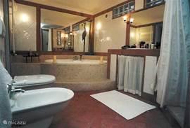 badkamer met 2 persoons bad, naast de slaapkamer op de begane grond. ook toegankelijk voor minder validen