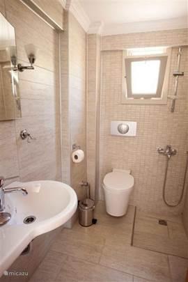 Kleine badkamer met toilet grenzend aan de woonkamer op de begane grond inclusief wasmachine.