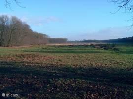 Het uitzicht vanaf het grondstuk uitkijkend over landgoed Schrevenhof.