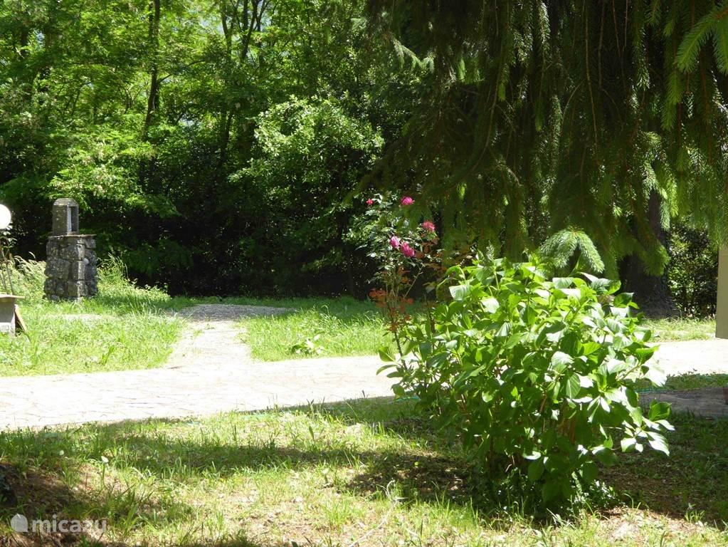 Overal planten en bloemen en bijzonder hoekjes in de ruime tuin.