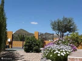 Parkeren kan voor de deur of op de parkeerlaats achter het hek in de tuin.