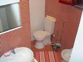 tweede badkamer beneden