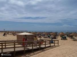 Praia da marina