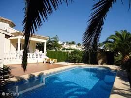 Zwembad met overdekt terras en ligbedden