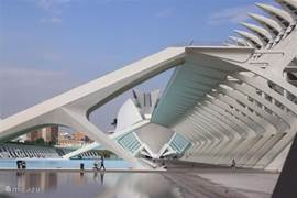 Valencia, de schoonheid van de gebouwen van architect Calatrava