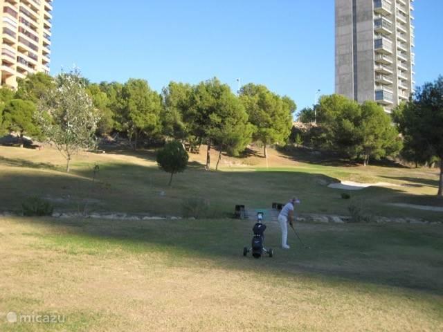 Er zijn meerdere  golfbanen in de omgeving. Deze foto is genomen op de par 3 golfbaan in Benidorm.