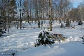 Winters uitzicht vanuit de woonkamer.