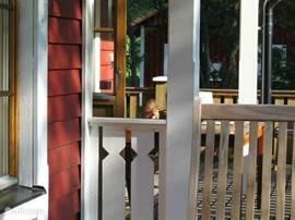 Eekhoorn op de veranda.