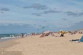 bewaakt strand