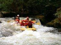 Rafting on the Cure