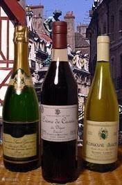 Wijngaarden en grootse wijnen