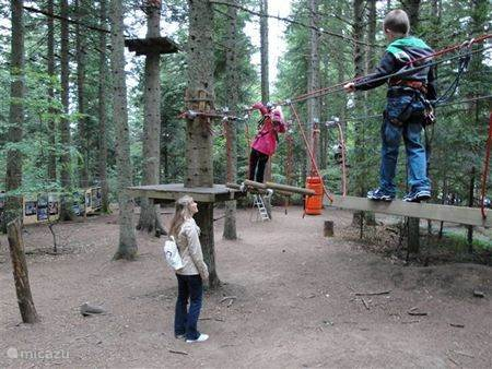 With an adventure park in the area for young and old, this something you do .......
