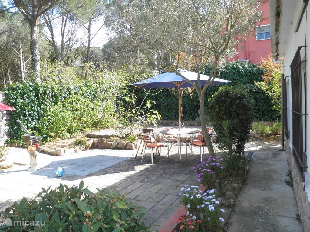 tuin in de zon