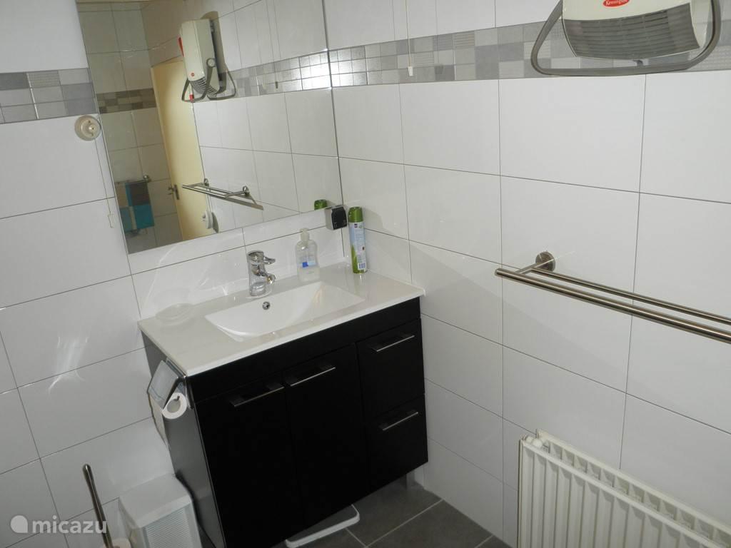 badkamer met wasmeubel, toilet, kast en douche