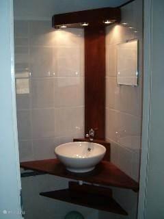 De badkamer met designwastafel en douche.