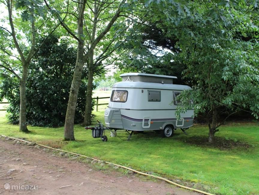 In onze parkachtige hele grote tuin kamperen diverse gezinnen lekker in de schaduw van de bomen.