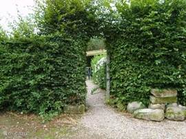 Entrance to this private, romantic cottage, completely separated by a beech hedge.