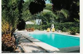 Het zwembad is 12x6 m. Het diepste punt is ongeveer 3 meter