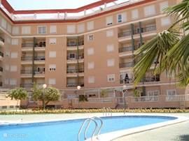 Schitterend 4-kamer appartement met zwembad op loopafstand van het mooie zandstrand. U beschikt over een eigen, afgesloten parkeerplaats.