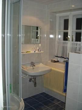 Badkamer 2 boven met douche, wastafel en wc.