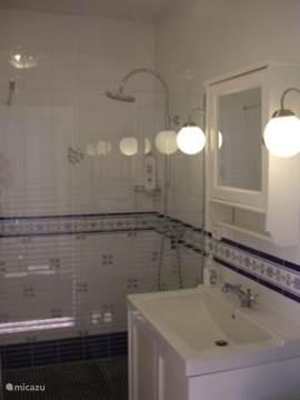2e badkamer met toilet en ruime inloopdouche