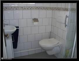 Toilet ,douche en wastafel op de begane grond.