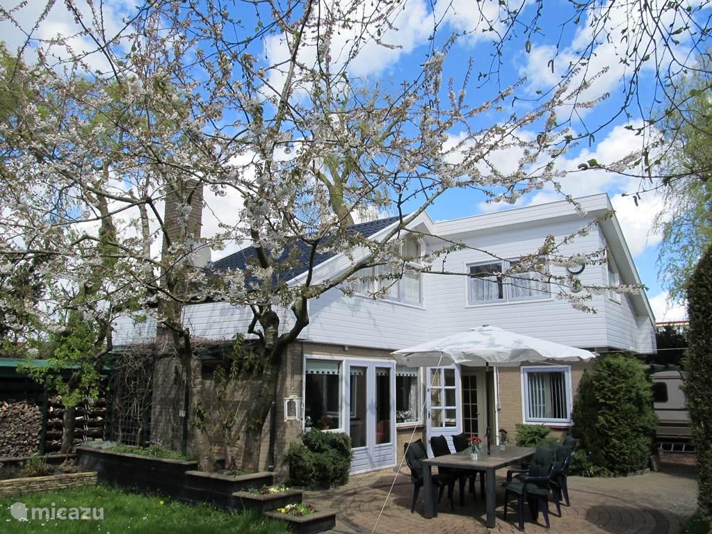 Voorjaar van 2016, kersenboom in bloei in de tuin van OnsHuis