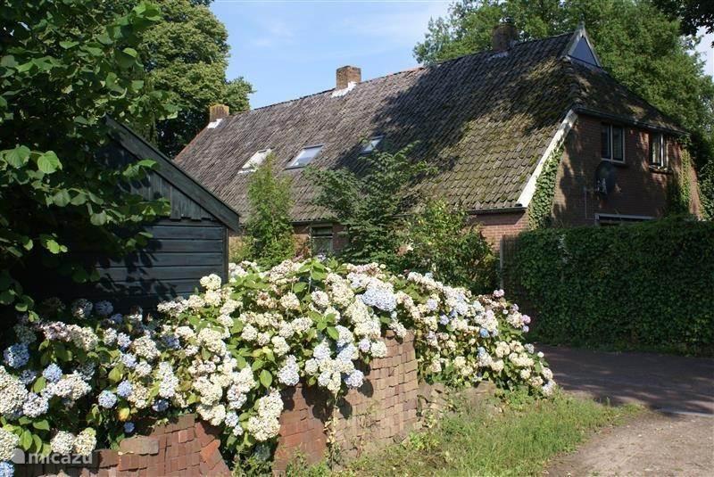 Vakantiehuis Nederland, Drenthe, Diever boerderij Onder de Eiken vakantieboerderij