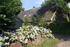 'Onder de Eiken' woonboerderij - op 10 minuten loopafstand van het Drents-Friesewold
