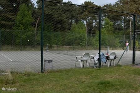 De tennisbaan.