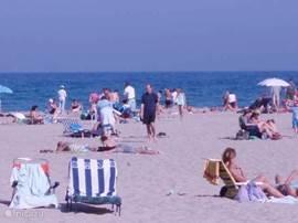 De diverse stranden aan de Costa Blanca zijn schoon en met zeer fijn wit zand. De stranden van Campoamor of La Zenia vindt u dichtbij. Bij La Marina is het naturisten strand.